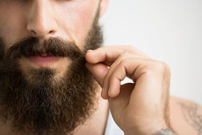 Barbas têm mais bactérias que uma casa de banho suja