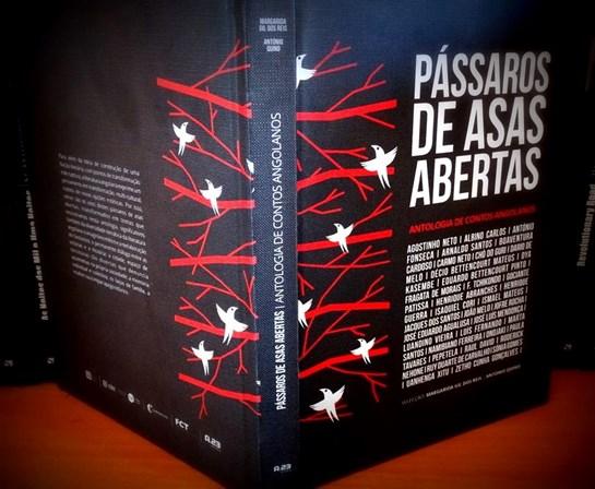Os sucessos da história da literatura angolana