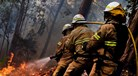 Três anos de prisão efectiva para incendiário