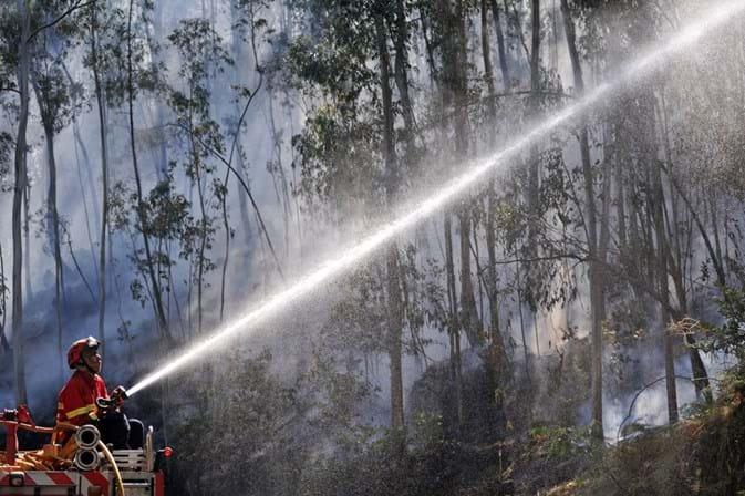 Vento dificulta combate aos incêndios de Coimbra, Gavião e Sertã