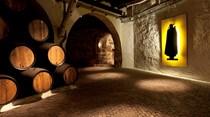 Dormir numa cave de vinho do Porto vai ser possível em 2017