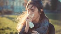 Tudo o que precisa de saber sobre a gripe