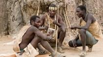 Mexa-se como se vivesse numa tribo africana