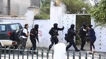 Sete células terroristas desmanteladas numa semana