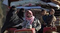 Estado Islâmico completamente cercado na província de Aleppo