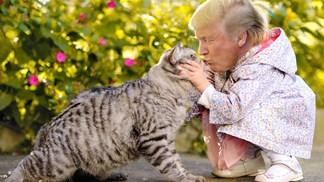 Tiny Trumps: As imagens que prometem incomodar o Presidente dos EUA