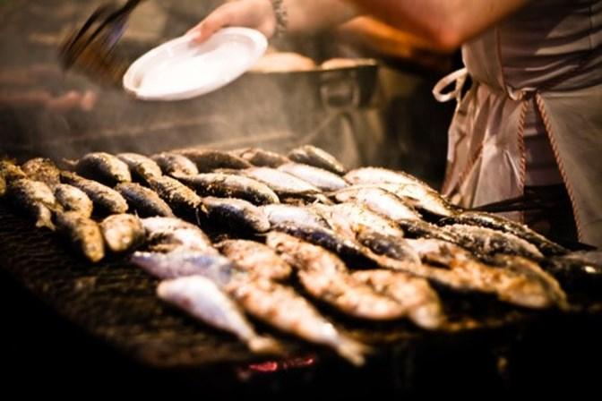 Portugal devia suspender pesca da sardinha já em 2018