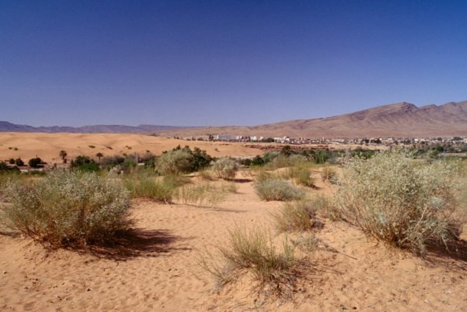 Neve cobre o deserto do Saara