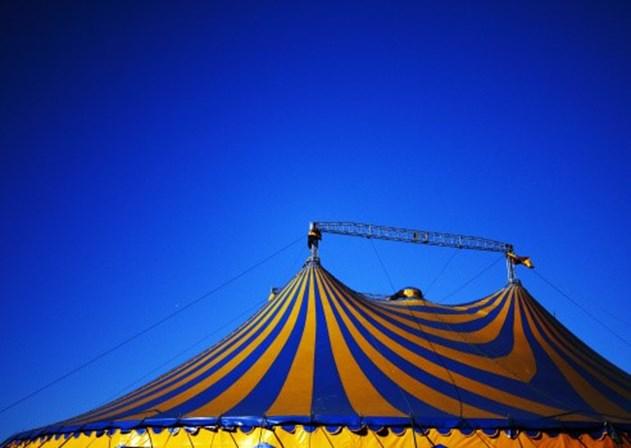 Acrobata do Cirque du Soleil morre durante apresentação na Flórida
